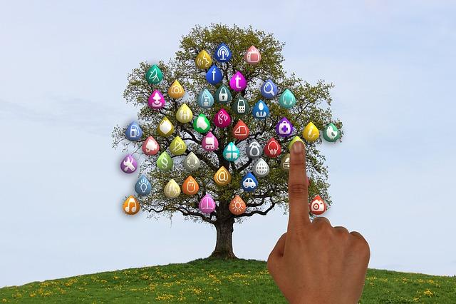 tree-834129_640